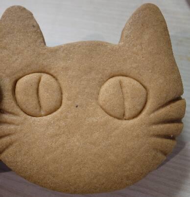猫ちゃんアルバム